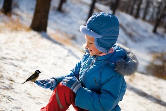 Help vogels overwinteren tijdens de Wilde Buiten Dagen