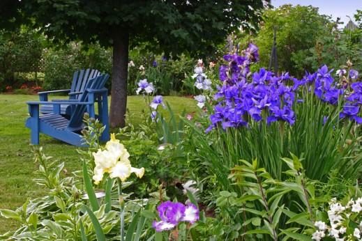 Tuinidee 2012 laat bezoekers proeven uit eetbare tuin gezondheidskrant - Tuin idee ...