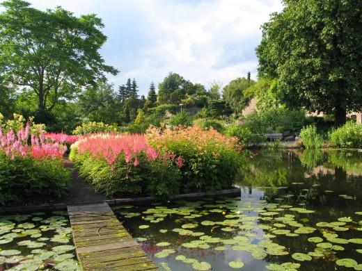 Avondwandeling Door De Botanische Tuinen In Utrecht Huis Design 2018 Beste Huis Design 2018 [somenteonecessario.club]