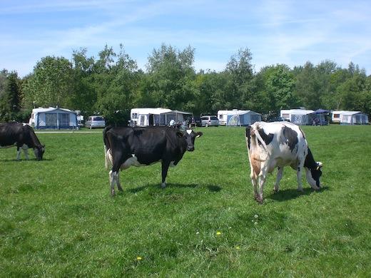 Camping De Stal in Drijber, Stichting Vrije Recreatie