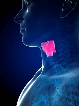 Voorstadia stembandkanker beter te voorspellen