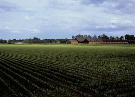 Boederij, landbouwgrond