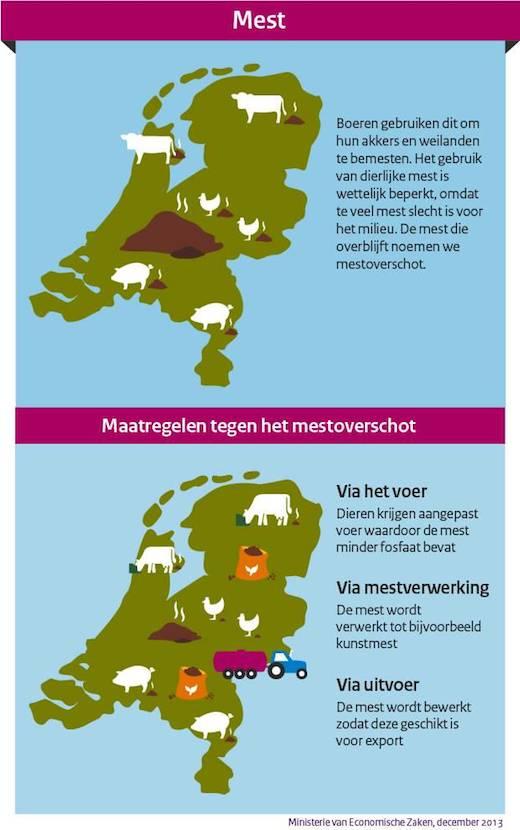 Infographic, Mestoverschot