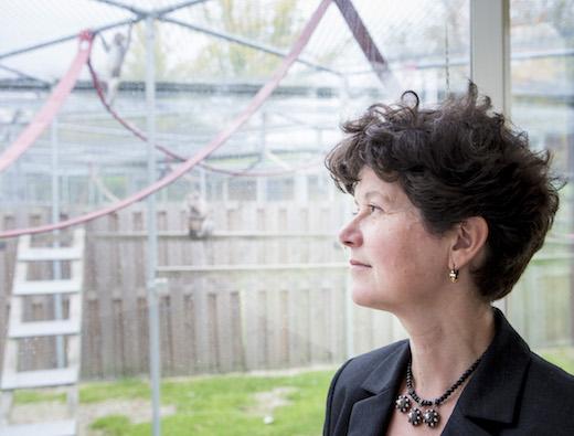 Prof. dr. Liesbeth Sterck
