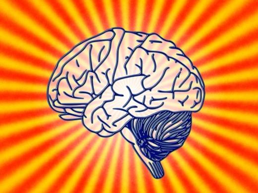 Hersenen, Psychologie