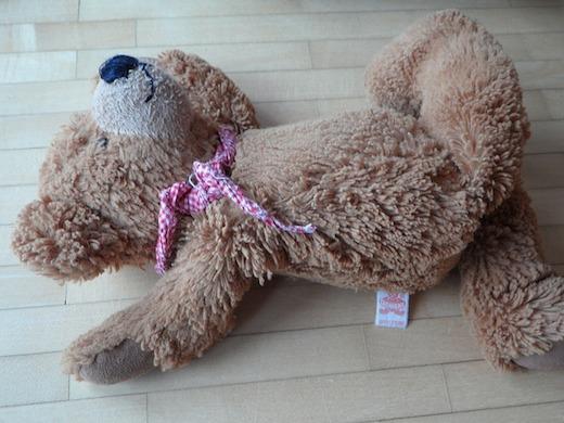 Teddybeer, pesten, eenzaam