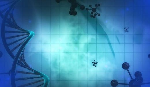 Microbiologie, DNA