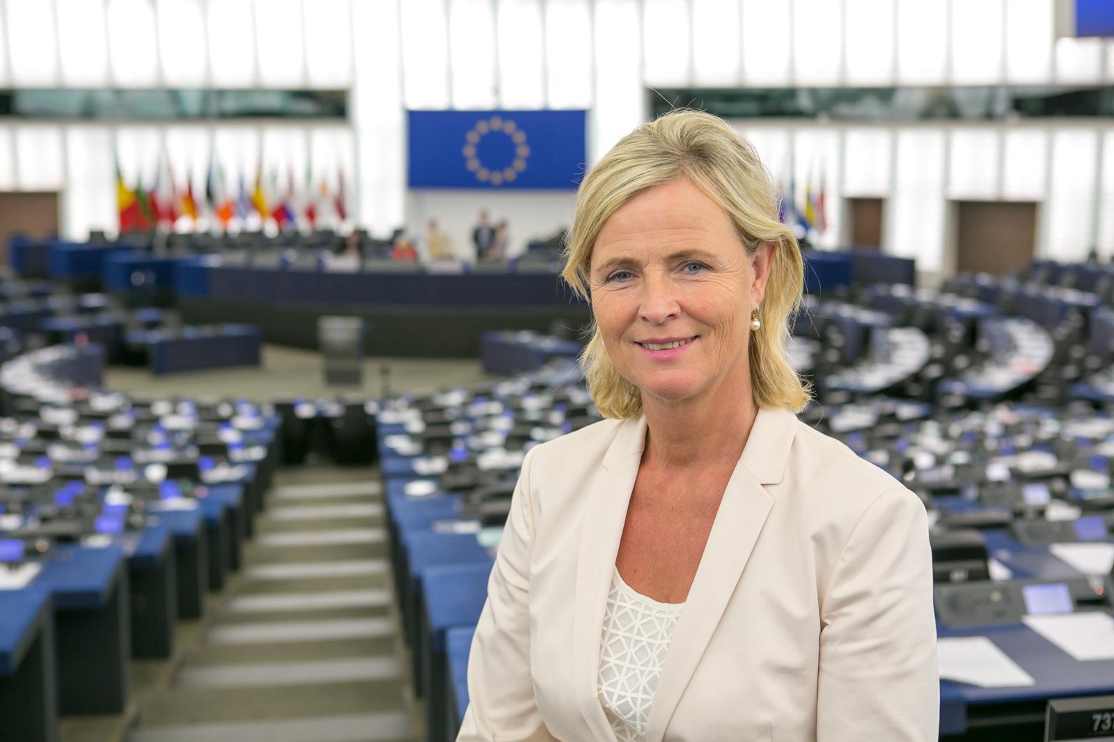 Annie Schreijer-Pierik, Europees Parlement