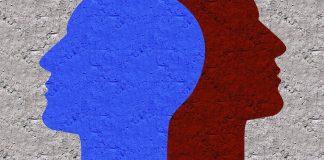 Stress en het kwetsbare brein