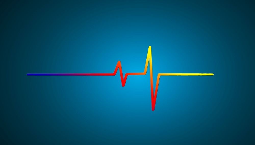 hartslag electrocardiogram