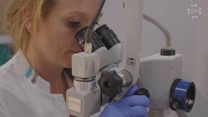 Edith van Esch achter microscoop
